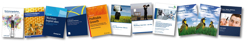 Buchcover Web